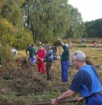 Freiwillige rechen Mähgut auf einer Wiese