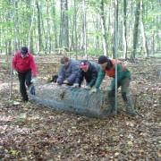 Lebenshilfe Erfurt engagiert sich im Nationalpark Hainich © EUROPARC Deutschland