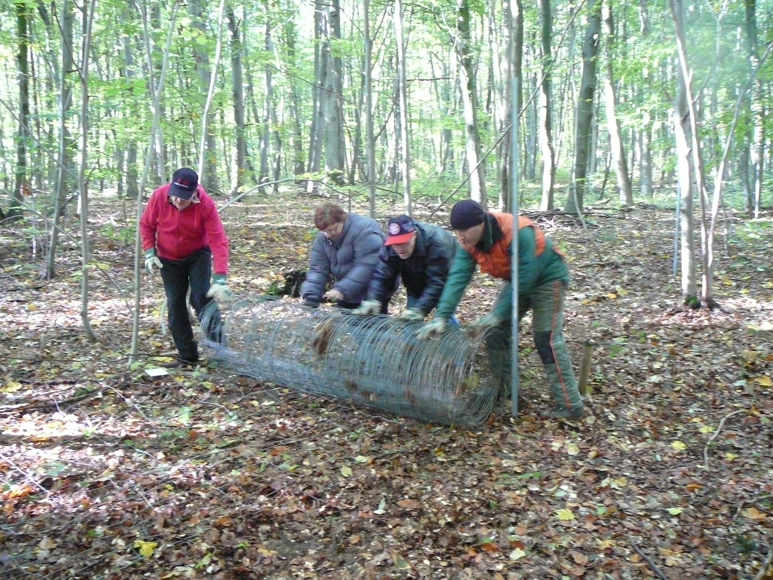 Lebenshilfe Erfurt engagiert sich im Nationalpark Hainich 23. Oktober 2012 - Fotoquelle: EUROPARC Deutschland