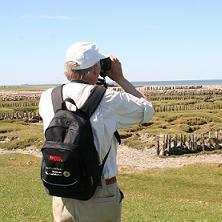 Freiwilliger fotografiert Salzwiesenlandschaft