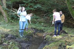 Vier Personen rechen Pflanzen und Schlamm aus Tümpel