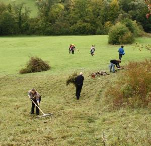 Freiwillige mit Harken auf einer Wiese
