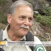 Portrait von Hartmut Friedrich vor Sandsteinfelsen